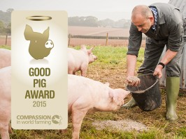 Denhay - Blog - Denhay Awarded Good Pig Award